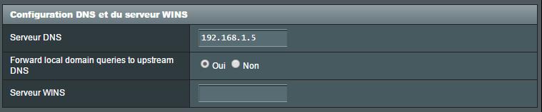 Accélérer le chargement des pages web avec un serveur de cache DNS